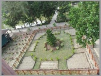Jhingakhali