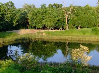 Sudhanyakhali-Camp